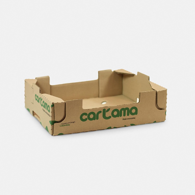Caja_2_1